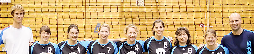 Volleyball 078 Banner810 1
